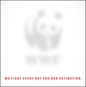 WWF Dream